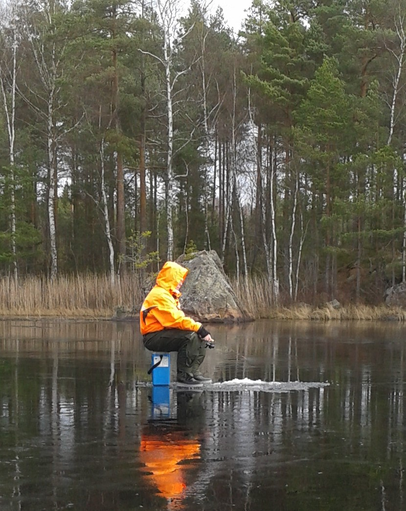 Pimpelfiske Lilla Hällesjön 2016-01-31