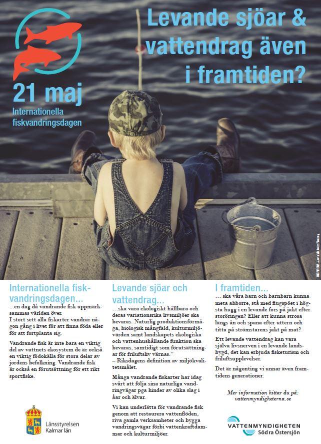 Internationella fiskvandringsdagen 2016-05-21